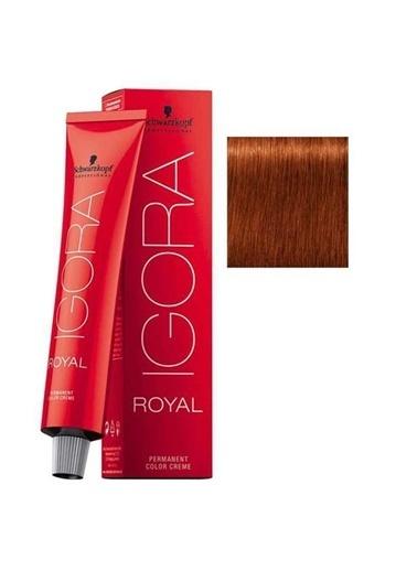 Schwarzkopf Igora Royal No:6-77 Koyu Kumral-Yoğun Bakır Saç Boyası Kahve